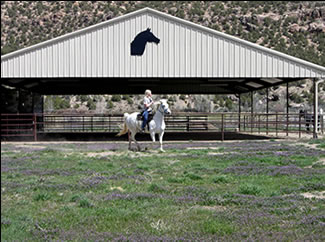 BOARD YOUR HORSE WITH CONFIDENCE AT JONES LIVERY & RANCH